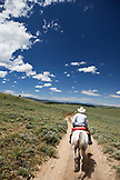 USA, Wyoming, Encampment, a cowboy rides his horse down a long dirt road, Abara Ranch