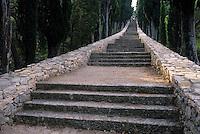 Europe/Croatie/Dalmatie/ Ile de Korcula: Accés à la colline Saint-Antoine.L'escalier est bordé de cyprés