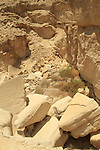 Israel, Nahal Peres in the Northern Negev