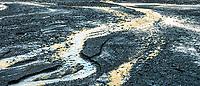 Fox River reflections, Westland Tai Poutini National Park, UNESCO World Heritage Area, West Coast, New Zealand, NZ