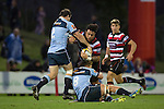 Gafatasi Su'a gets tackled by Matt Moulds and Matt Matich. The game of Three Halves, a pre-season warm-up game between the Counties Manukau Steelers, Northland and the All Blacks, played at ECOLight Stadium, Pukekohe, on Friday August 12th 2016. Photo by Richard Spranger.