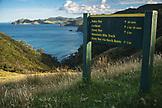 NEW ZEALAND, Coromandel Peninsula, Trail Sin on the Muriwai Walk, Ben M Thomas