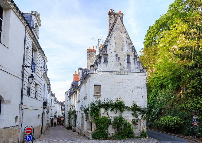 France, Indre-et-Loire (37), Loches, centre historique // France, Indre et Loire, Loches, historical centre