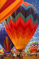 Hot air balloon; festival; Albuquerque; New Mexico; USA; US; hot air balloons; ballooning