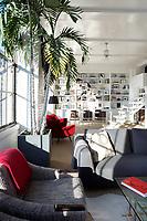 Modern gray sofas
