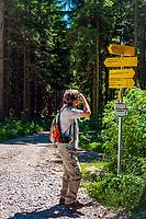 Deutschland, Bayern, Chiemgau, Marquartstein: Wanderwege unterhalb der Hochplatte. Von Marquartstein für die Hochplattenbahn in wenigen Minuten hoch zur Staffenalm     Germany, Bavaria, Chiemgau, Marquartstein: hiking trails below Hochplatte mountain, a chairlift takes you within minutes from Marquartstein to Staffenalm