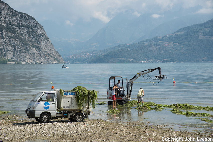Clearing weed using a Bobcat 322 and tipper truck on Lake Iseo, Lombardy, Italy.