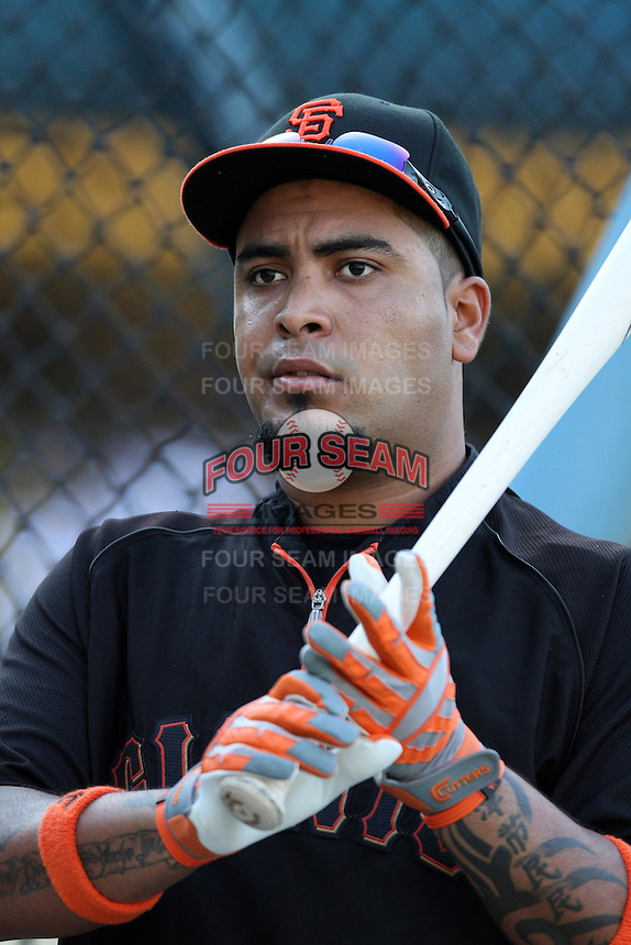 Hector Sanchez #29 of the San Francisco Giants before a game against the Los Angeles Dodgers at Dodger Stadium on August 21, 2012 in Los Angeles, California. San Francisco defeated Los Angeles 4-1. (Larry Goren/Four Seam Images)