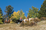 Family group outdoors on a crisp and cool fall morning riding horses on a wrangler-led ride, amid aspen groves high in Rocky Mountains, near Estes Park, Colorado, USA (MR #88)