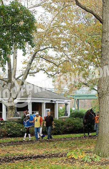Saigon Story at Delaware Park on 10/27/12..