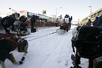 March 3, 2007 Dan Huttenen Lindy during the Iditarod ceremonial start day in Anchorage