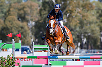 AUS-Annabel Armstrong rides Pumpernickel during the Showjumping for the Horseland CCI3*-L. 2019 AUS-Mitsubishi Motors Australian International 3 Day Event. Victoria Park. Adelaide. South Australia. Saturday 16 November. Copyright Photo: Libby Law Photography