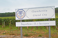 Vineyard. Chambertin Grand Cru.  Gevrey Chambertin, Cote de Nuits, d'Or, Burgundy, France