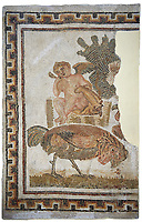 Picture of a Roman mosaics design depicting the cupid owner of a cockerell at a cock fight, from the ancient Roman city of Thysdrus. 2nd half of the 2nd century AD, House of Tertulla. El Djem Archaeological Museum, El Djem, Tunisia.