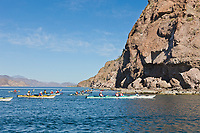 Danzante Island, Gulf of California off the Baja coast of Mexico.