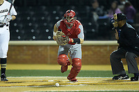 Sacred Heart Pioneers catcher Dan Fallacaro (20) chases after the ball during the game against the Wake Forest Demon Deacons at David F. Couch Ballpark on February 15, 2019 in  Winston-Salem, North Carolina.  The Demon Deacons defeated the Pioneers 14-1. (Brian Westerholt/Four Seam Images)