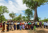 ZAMBIA, Sinazongwe, dancing Tonga women under Baobab tree