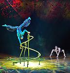 Handbalancing dragonfly performed by Vladimir Hrynchenko from the Ukraine. OVO - Cirque du Soleil at the Von Braun Center Propst Arena. (Bob Gathany/bgathany@AL.com)