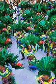 Rio de Janeiro, Brazil. Carnival; a smiling face in the midst of green feathered dancers. Beija flor samba school.