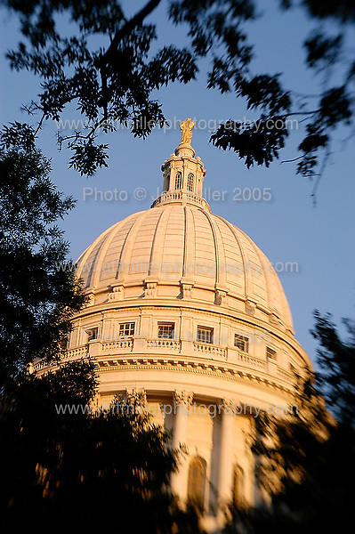 Trees frame a view of the Wisconsin State Capitol dome in downtown Madison, Wis., during autumn on Sept. 14, 2005..Photo © Jeff Miller 2005 - all rights reserved.www.jeffmillerphotography.com  ?  608-250-2374.Date: 09/05   File#: NIKON D100 digital camera frame 4023