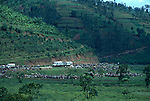 Red Cross vehicles delivering aid to  Nyaconga camp ( around 60,000) of displaced people, all  Hutus displaced by a push by the Tutsi led RPA ( Rwandan Patriotic front) ..
