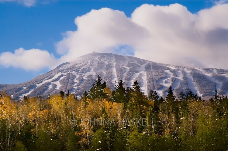 A fall morning after a snow storm on Sugarloaf Mountain in Carrabassett Valley, Maine. This storm in October had over 4 feet of heavy snow fall that caused many a white birch tree to loose branches and turn all the trails white.