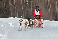 Lynn Orbison drives an 8 dog team in the 2009 Limited North American sprint sled dog race, Fairbanks, Alaska.