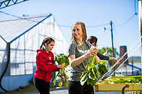 Students participate in Serve Lynchburg at Lynchburg Grows on April 21, 2018. (Photo by Jessie Rogers)
