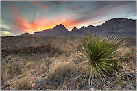 Looking east at sunrise in this Big Bend National Park image, the Window is lit up with early morning light. Big Bend is an amazing place to visit. It is in the middle of the Chihuahuan Desert - seemingly in the middle of nowhere.
