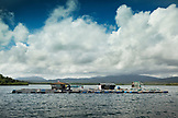PHILIPPINES, Palawan, Puerto Princessa, a fish farm in the Santa Lucia area