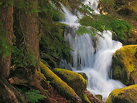Waterfall on the North Umpqua River, Oregon.