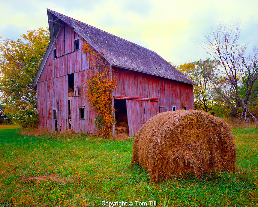 Old Barn on a Fall Morning, Flint Hills Region, Kansas