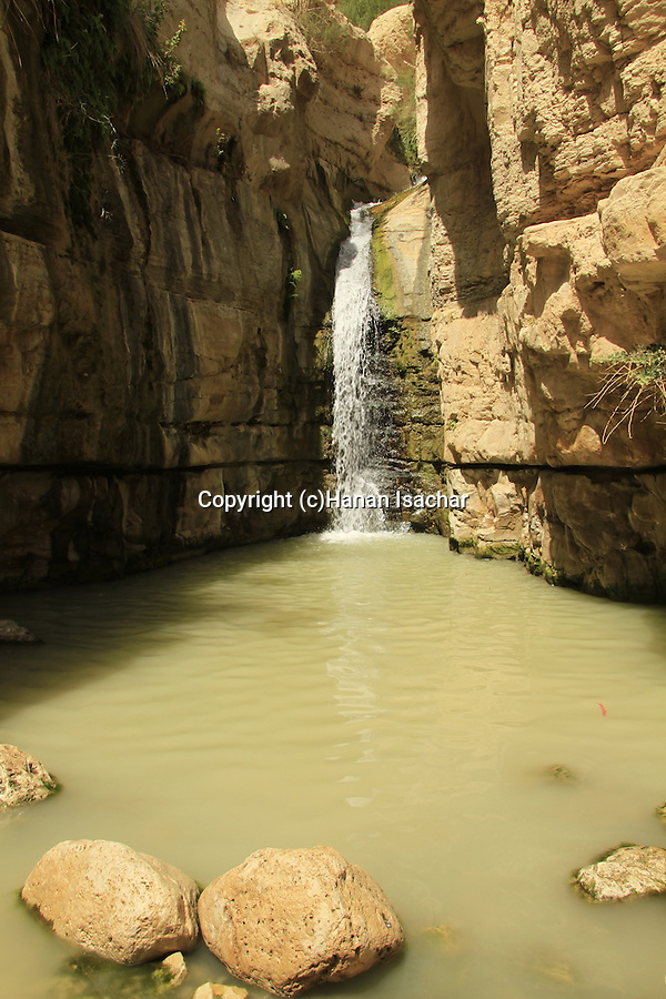 Israel, Judean desert, the waterfall in Nahal Arugot