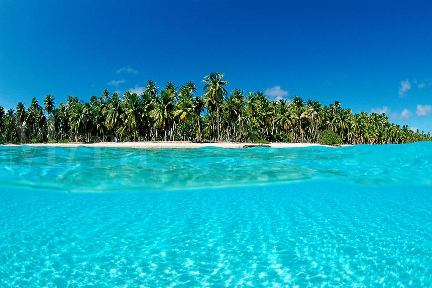 Tropical Pacific Beach, Tuamotus, Pacific Ocean
