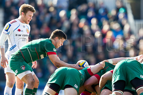 28.03.2015.  Leicester, England.  Aviva Premiership. Leicester Tigers versus Exeter Chiefs. Ben Youngs of Leicester Tigers prepares to feed the ball into a scrum.