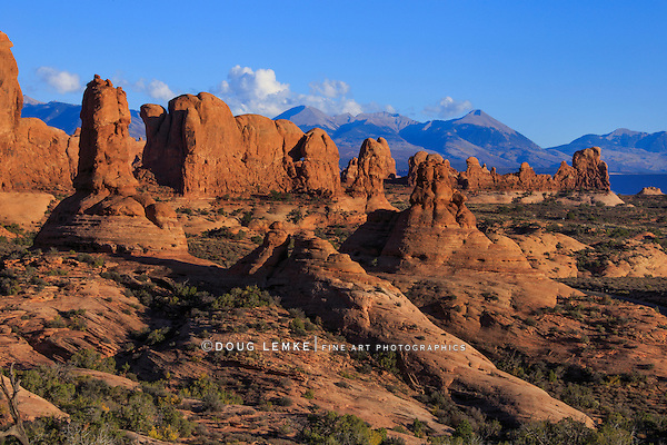 A Veritable forest of strange rock forms and Mountains at Arches National Park, Utah, USA