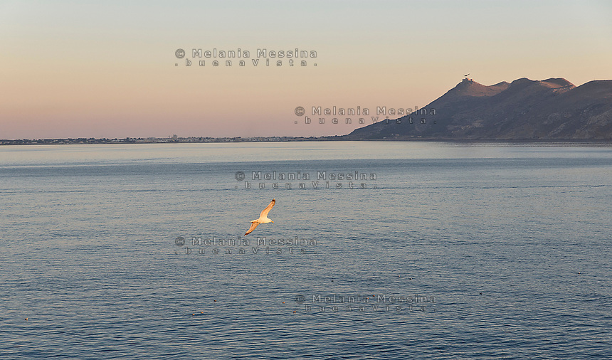 Sunset in Levanzo with Favignana view, one of Egadi islands in Sicily.Tramonto a Levanzo con vista su Favignana nelle isole Egadi in Sicilia.