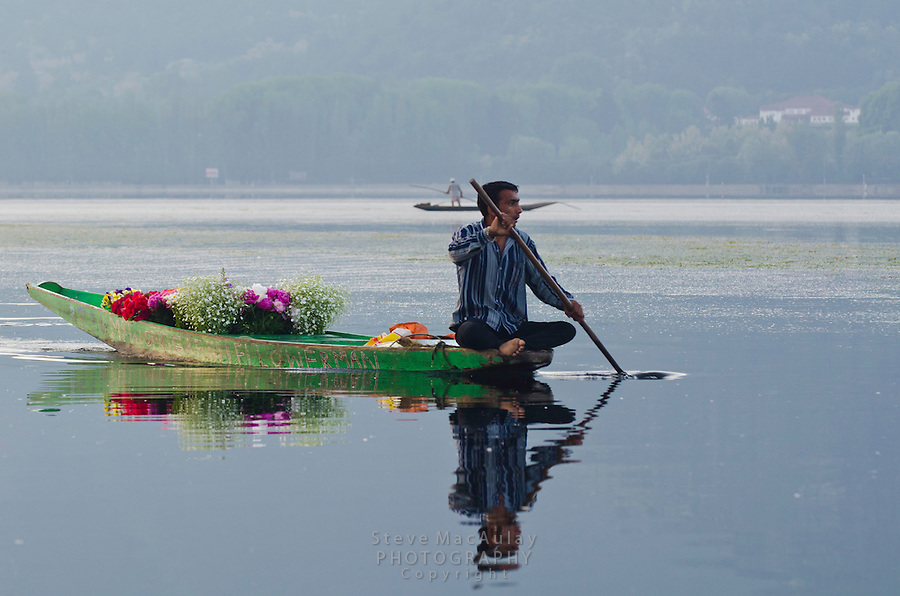Muslim flower seller with floating store on a Shikara, or gondola boat, on Dal Lake, Srinagar, Kashmir, India.