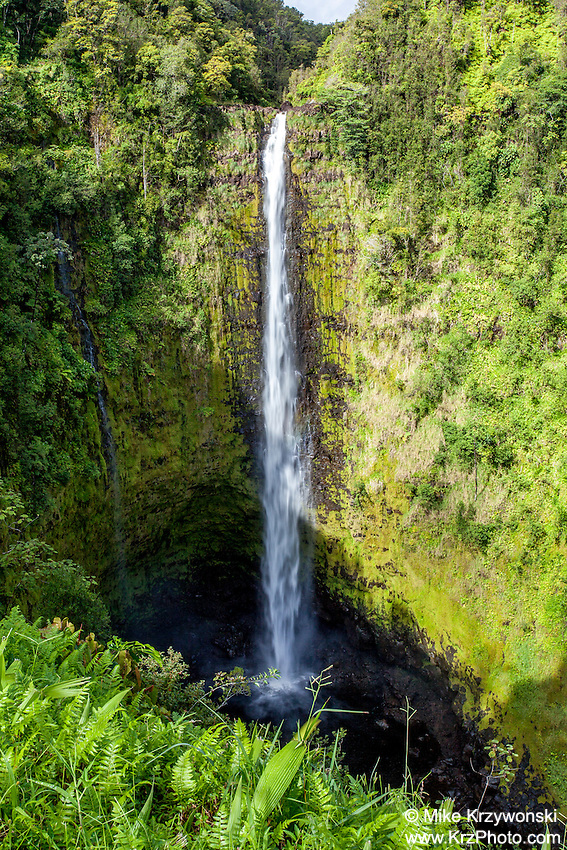 Akaka Falls waterfall, Big Island, Hawaii