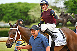 HOT SPRINGS, AR - APRIL 13:  Fantasy Stakes at Oaklawn Park on April 13, 2018 in Hot Springs, Arkansas. #1 Sassy Sienna with jockey Gary L Stevens. (Photo by Ted McClenning/Eclipse Sportswire/Getty Images)