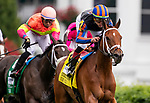LOUISVILLE, KENTUCKY - MAY 04: Beau Recall with Irad Ortiz wins the Churchill Downs Turf Mile at Churchill Downs in Louisville, Kentucky on May 04, 2019. Evers/Eclipse Sportswire/CSM