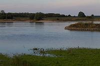 Unterlauf der Elbe im Wendland, Abendstimmung