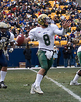 24 November 2007: Matt Grothe (8)..The South Florida Bulls defeated the Pitt Panthers 48-37 on November 24, 2007 at Heinz Field, Pittsburgh, Pennsylvania.