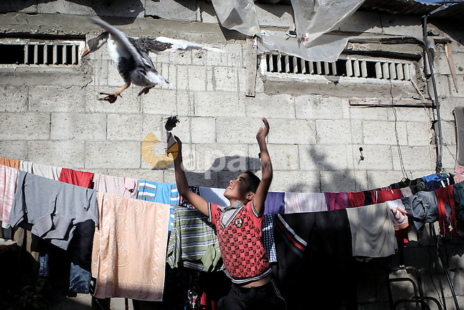 A Palestinian boy plays with a goose outside his family's home in a poverty-stricken quarter of al-Zaytoon in Gaza City on Sept. 17, 2013. Reports said that an increasing number of Gaza families are reportedly falling further into poverty, with unemployment rate standing at over 30 percent and  poverty level of 39 percent according to 2013 estimates. Photo by Ezz Zanoun