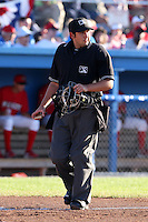 Home plate umpire  Ryan Bealo during a game at Dwyer Stadium in Batavia, New York on July 3, 2010.  Photo By Mike Janes/Four Seam Images