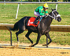 Royal Jewely winning The Winter Melody Stakes at Delaware Park on 9/12/16