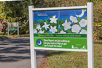 Lakes Park Photographs