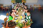 Bellewstown School Garden