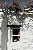 East Ogwell, Devon, England. Cottage window with jugs  and wisteria.
