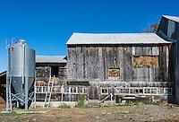 Hay barn, Woodstock, Vermont, USA
